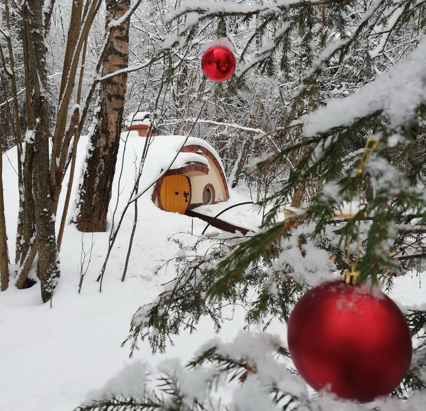 Экоотель «Хоббитлэнд» в Подмосковье зимой