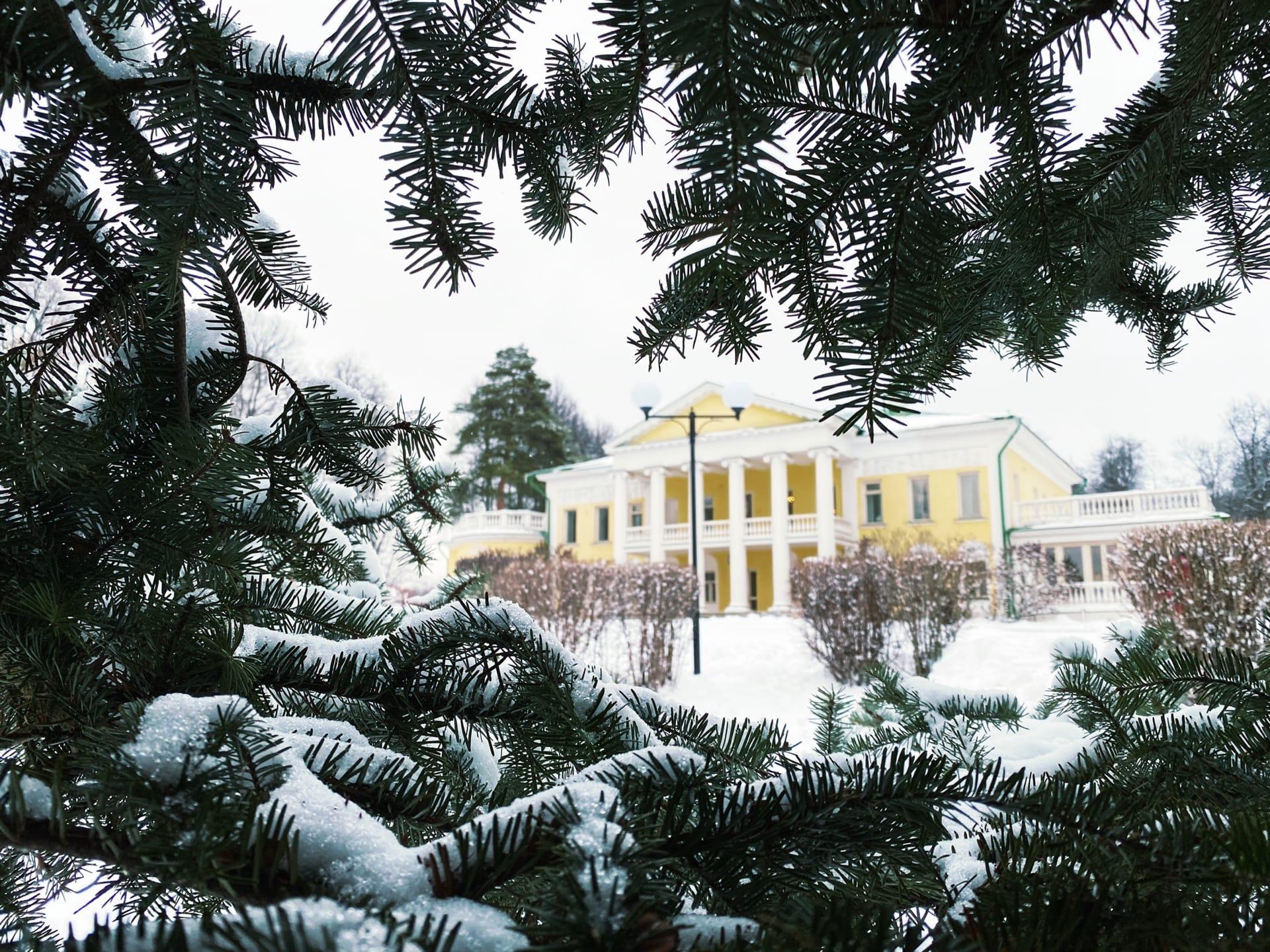Музей-заповедник «Горки Ленинские» зимой